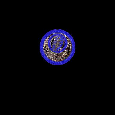 Blue Grateful Dead Skull