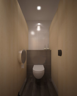 Typical Toilet2