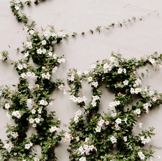 wedding-photos-elena-brendon-2109.jpg