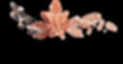 Logo-flach.png
