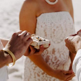 Maria-Tony-Wedding-Photos-6420.jpg