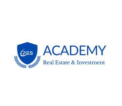 pes academy logo blue