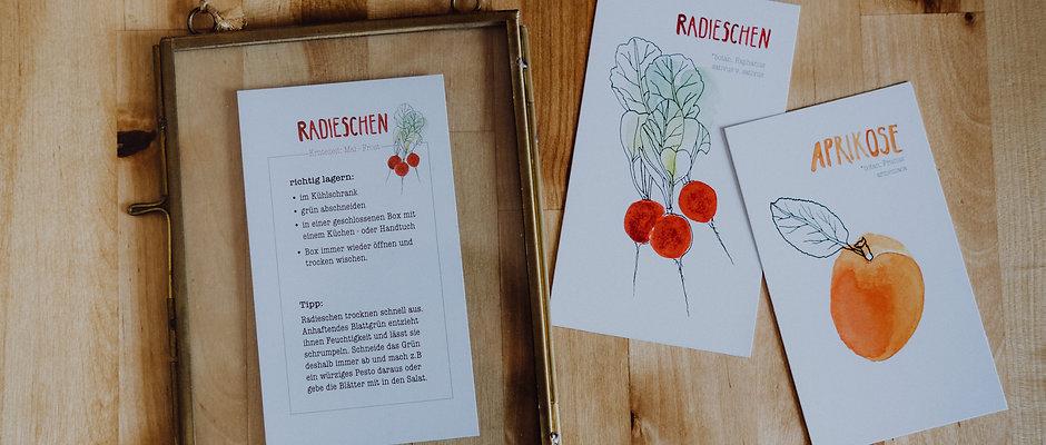 Lagerkarten-Set Obst und Gemüse
