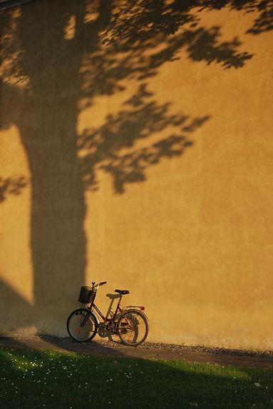 bike-4358506_1920.jpg