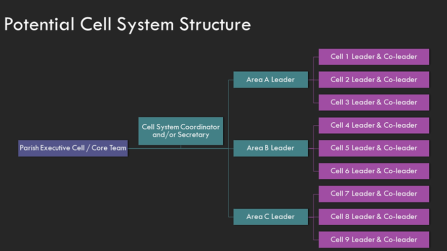 Potential Cell System Structure.png