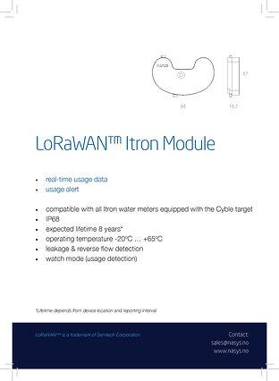 1_Lorawan-Itron-Module-water-flaier-eest