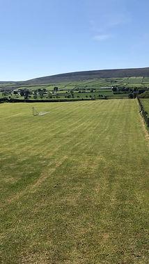 twaddle-field.jpg