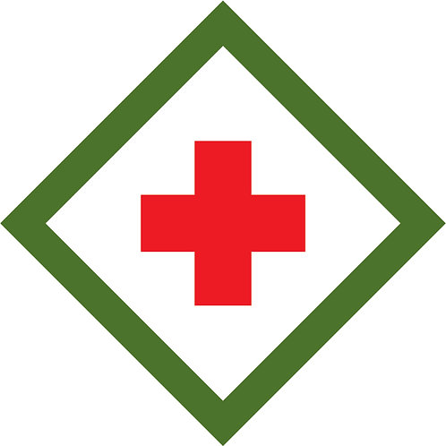 Webelos Scout, First Responder Adventure
