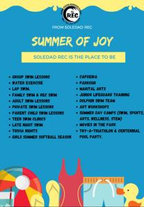 summer of joy.png