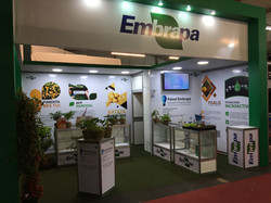Stand EMBRAPA - Hortitec 2018