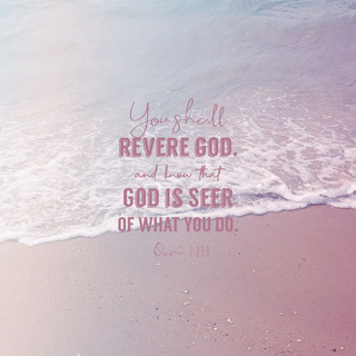 You shall revere God, and know that God is Seer of what you do. ~ Quran 2:233