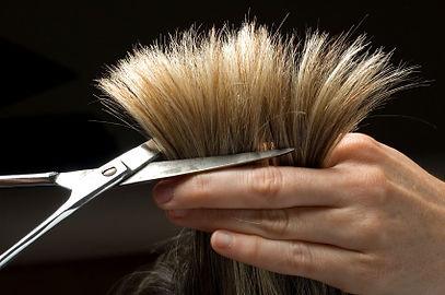 Mobile Hairdresser Price List