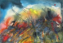 The Vixen's Wilderness - Trudi Ochiltree