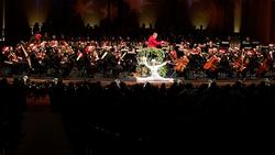 Charleston Symphony Pops White Tux 2019-