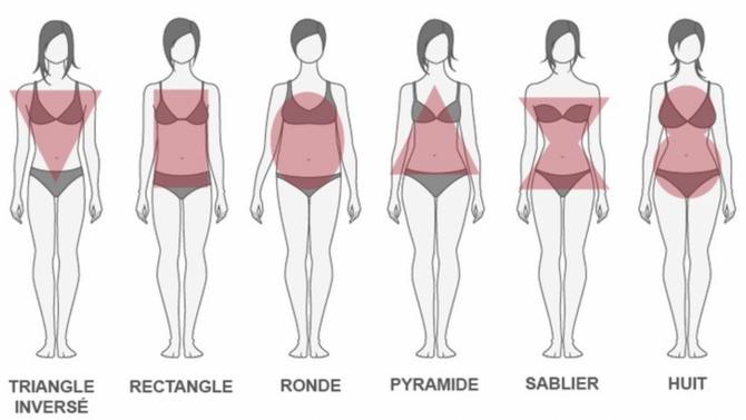 Les différents types de morphologies, savez vous quelle est la vôtre ?