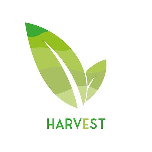 Harvest Web.jpg