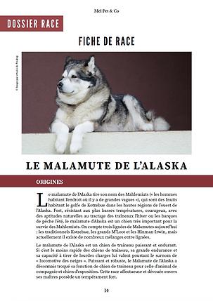 Magazine #4 - Apercu - Univers Canin.png