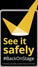 See it safely logo updated (V).png