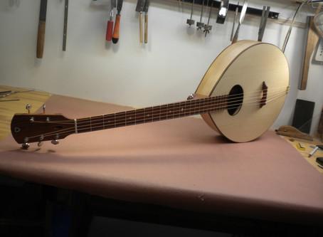 Mellowtone Low Banjo