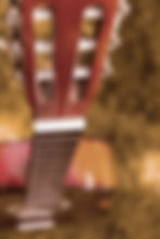 freestockgallery-gitarrenhals-1764.jpg