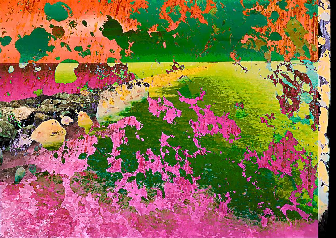 Vivid Dreams - #0665