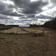 Garlic Site for 2021 crop