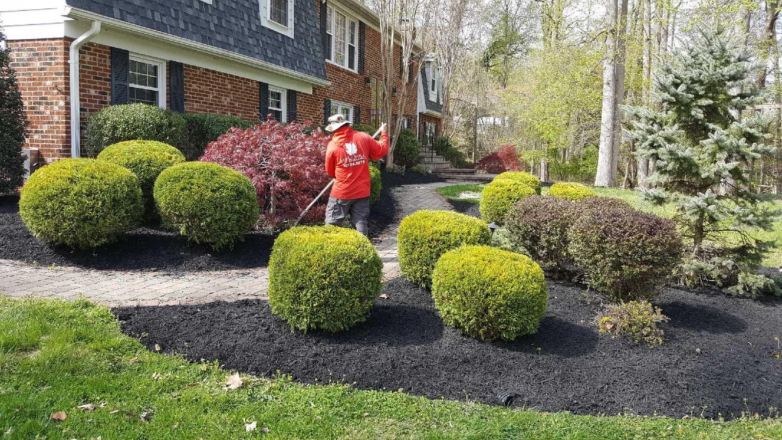 mulch in progress