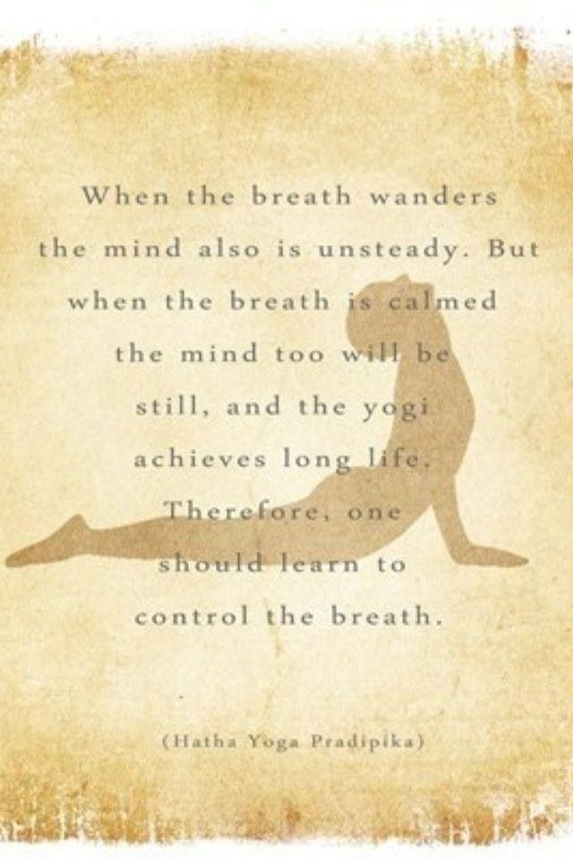 Atzina.Yoga.46.jpg