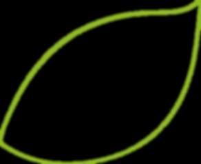 feuille verte_gauche_ligne.png
