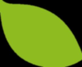 feuille verte gauche.png