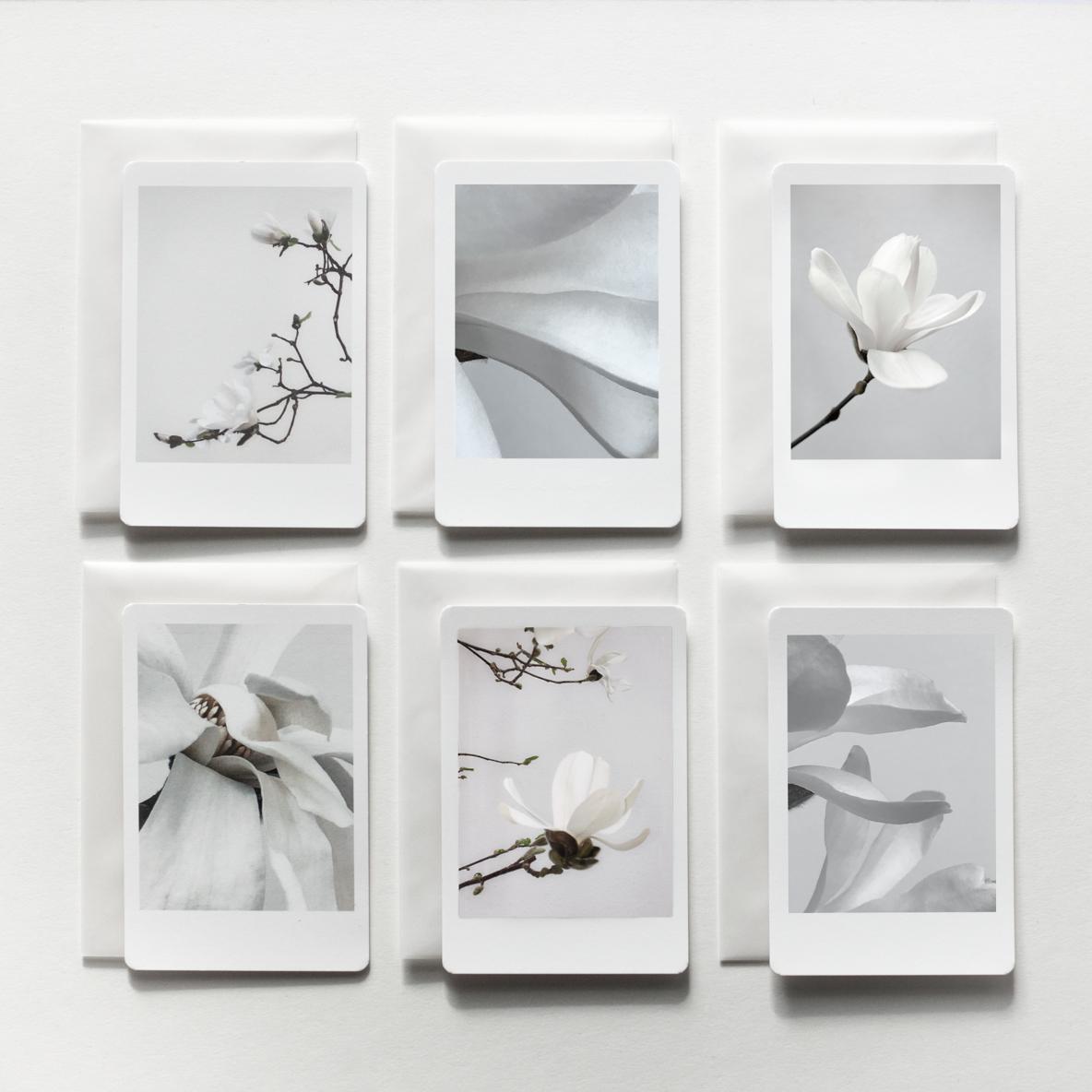 silke-lauffs-magnolia-days-überblick