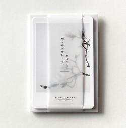 silke-lauffs-magnolia-days_edited