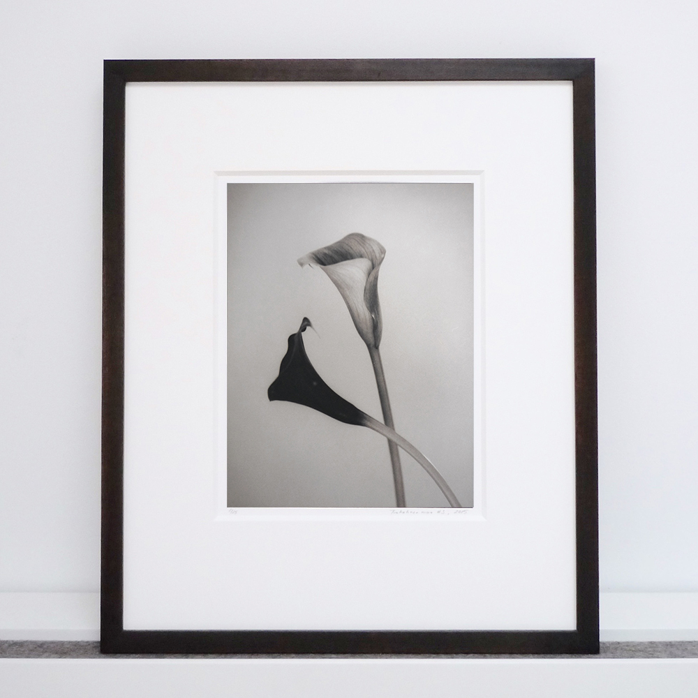 silke-lauffs-calla#2-framed