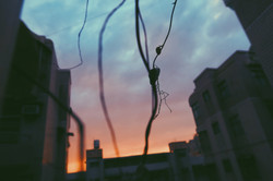 the moment in sunset