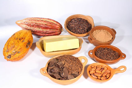 Organic-Certified-Cacao-Beans-and-Nibs.j
