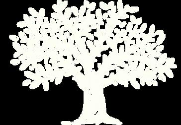 Fraser Logo White tree only.png
