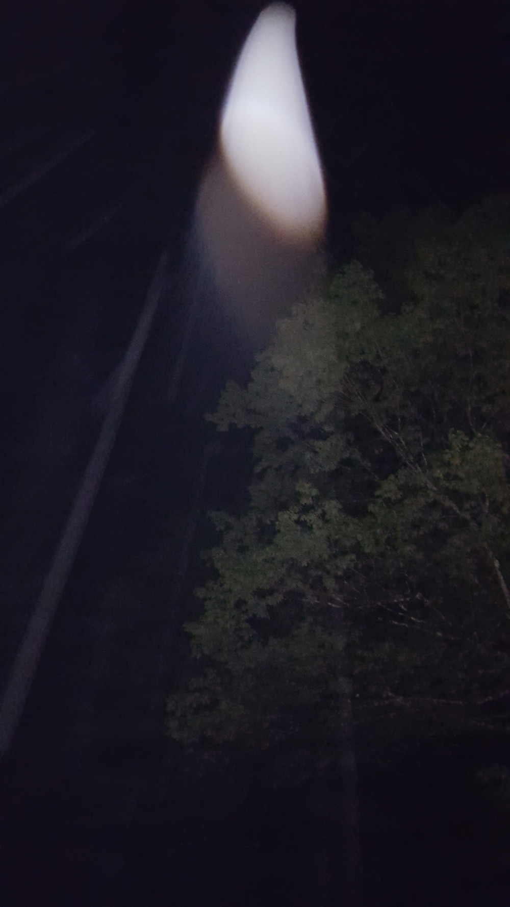 Nighttime. Elongated yellowish-white teardrop with brownish shadow spotlight beamimg down from the sky over the trees.