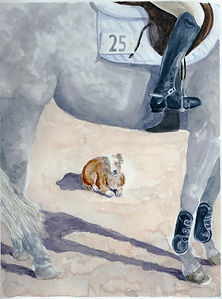 Dog and horse watercolor Yvonne Haus