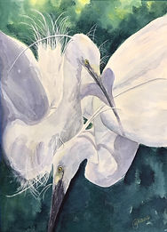Snowy Egrets watercolor