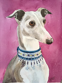 italian greyhound watercolor