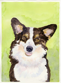 Yvonne Haus watercolor dog