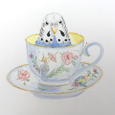 burli in teacup copy.jpg