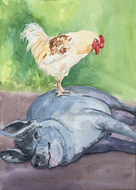 rooster and hog watercolor