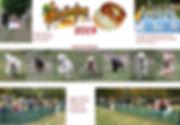 Collage_2019.jpg