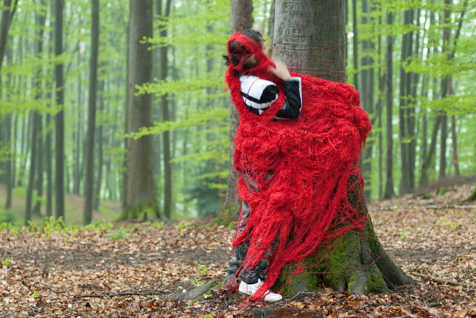 Der rote Faden im Wald.jpg
