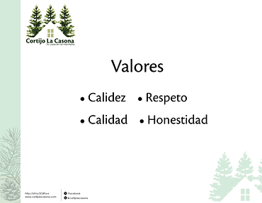 Mision Vision y Valores-06.png