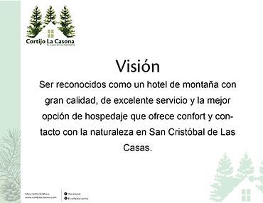 Mision Vision y Valores-04.png