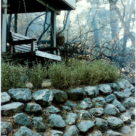 Mt. Vision Fire: 1995