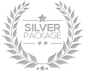 package_silver.png