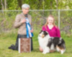 Elsa 08_2018-05_SheltieSpecial  Winners